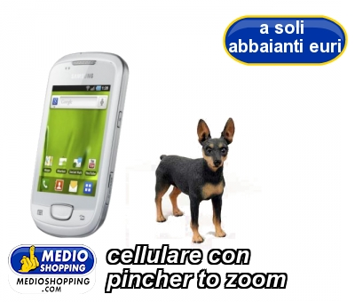 cellulare con pincher to zoom
