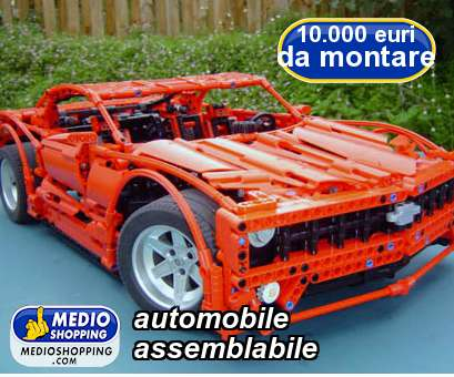 automobile  assemblabile