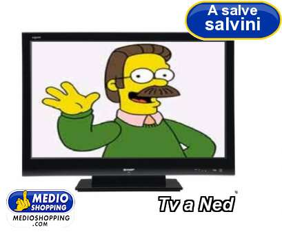 Tv a Ned