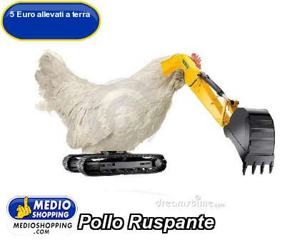 Pollo Ruspante
