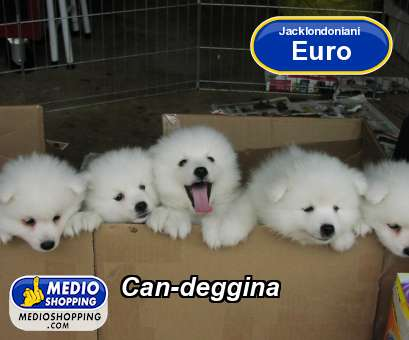 Can-deggina