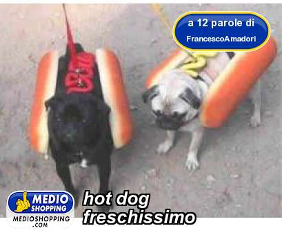 Medioshopping hot dog freschissimo