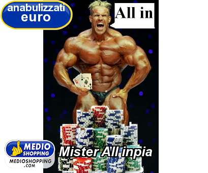 Mister All inpia
