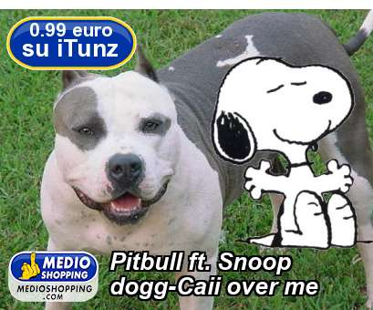 Pitbull ft. Snoop dogg-Caii over me