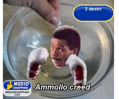 Ammollo creed