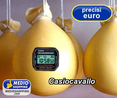 Casiocavallo