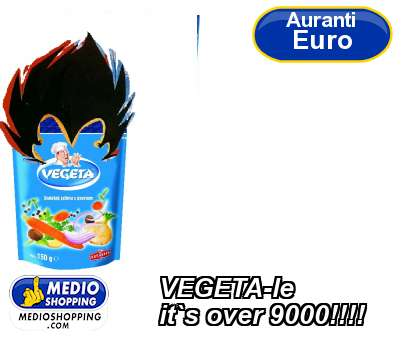 VEGETA-le it`s over 9000!!!!