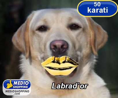 Labrad`or