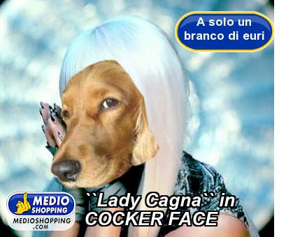 ``Lady Cagna`` in COCKER FACE