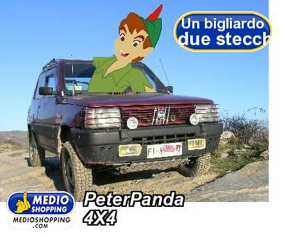 PeterPanda 4X4