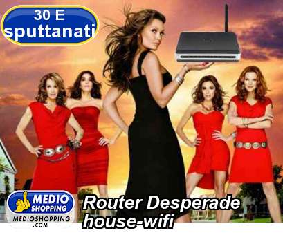 Router Desperade  house-wifi