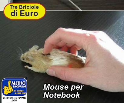 Mouse per       Notebook